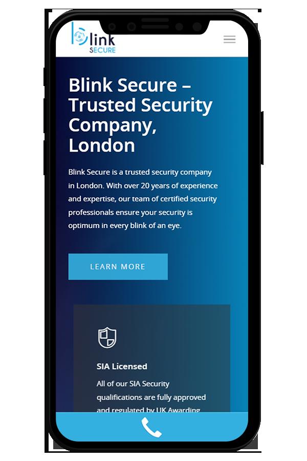 Professional Web designs Security